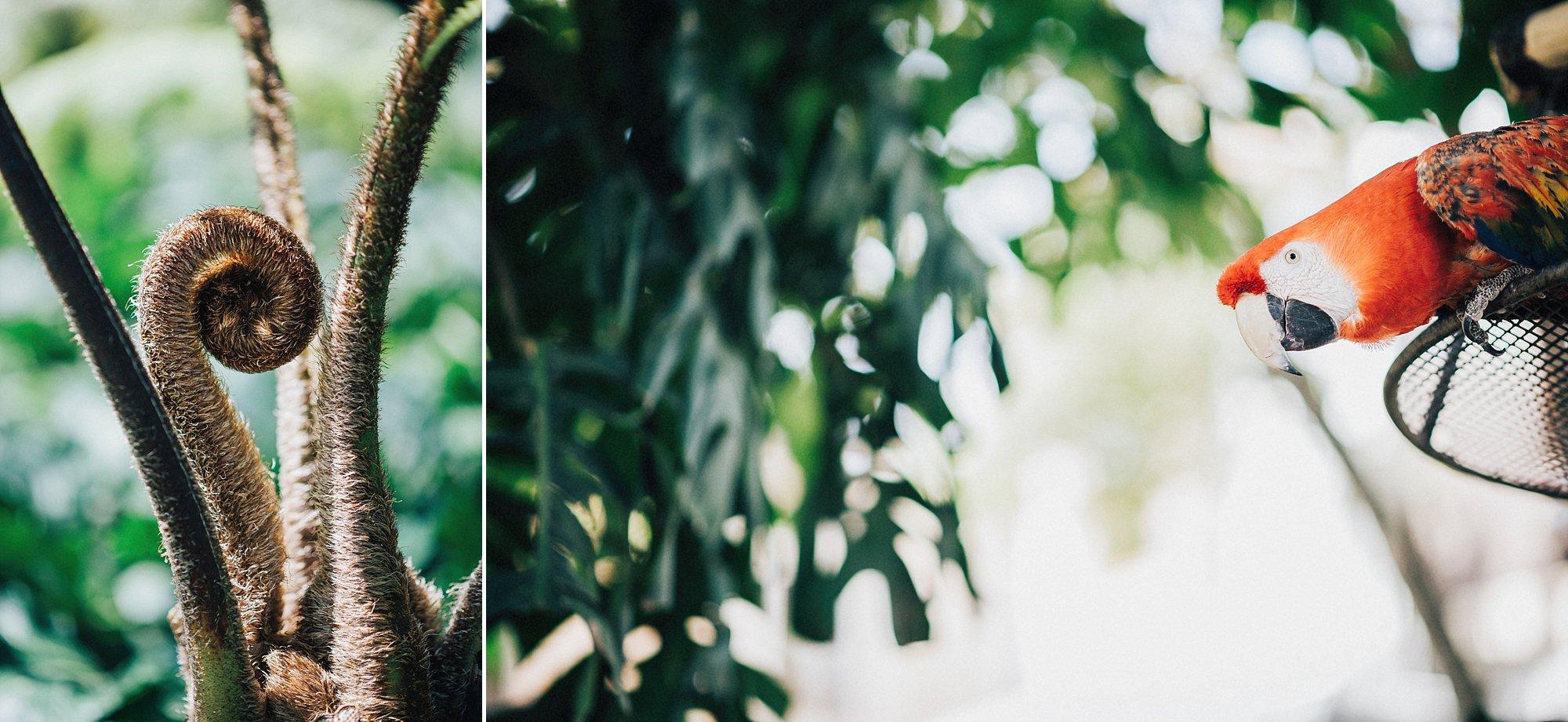 alex-yazmin-wedding-photographer-antigua-guatemala-037